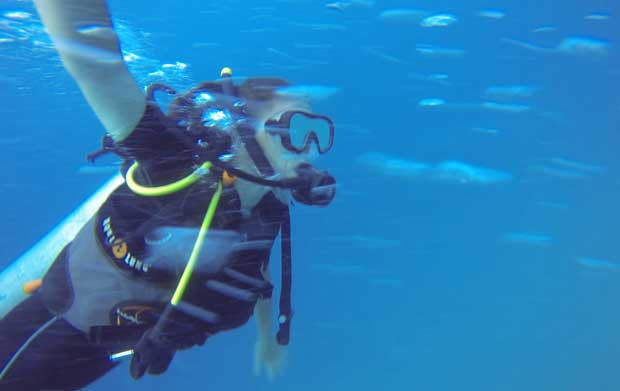 blog_scubadiving_03