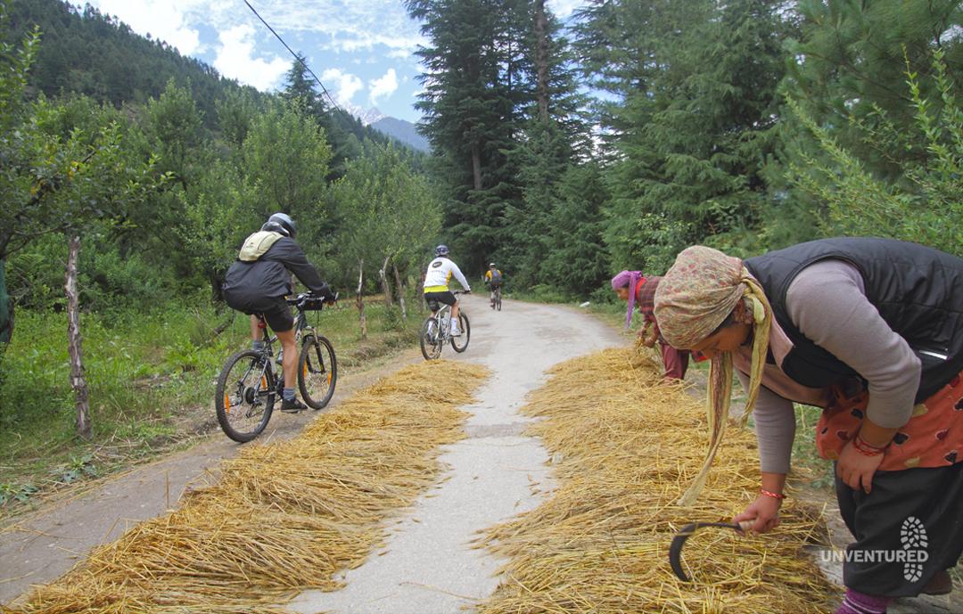Manali to Leh Bike Tour