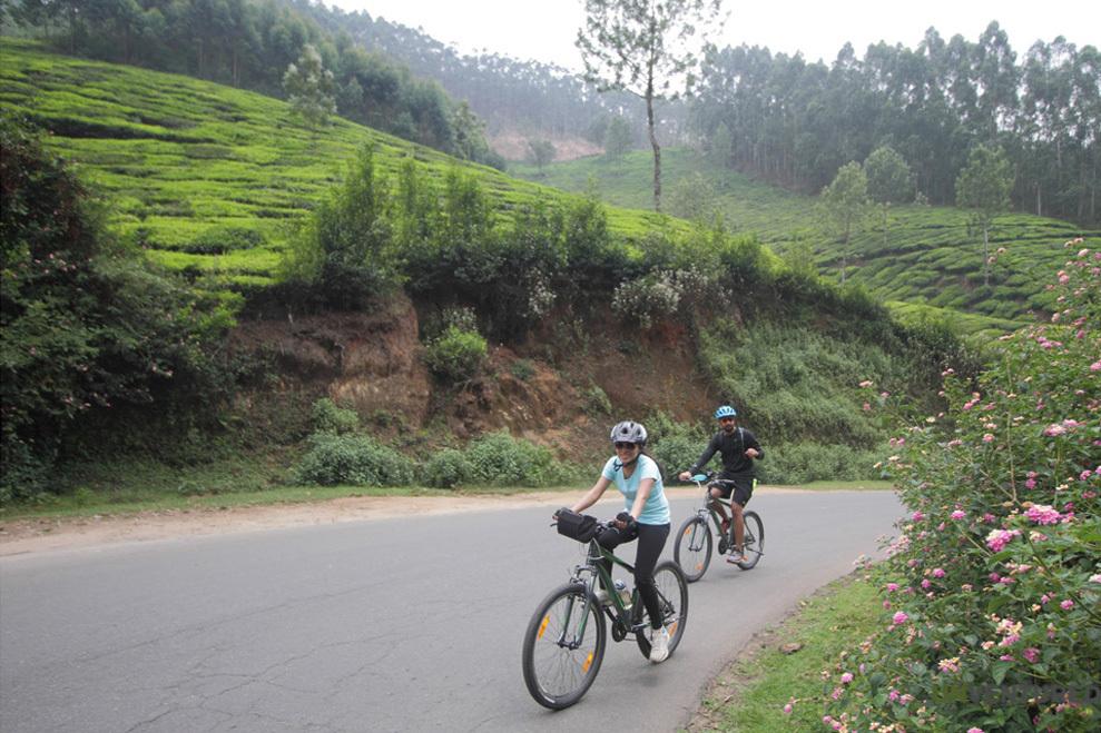 Munnar Hike and Bike Tour