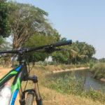 Mysuru City Tour - Srirangapatna Trail